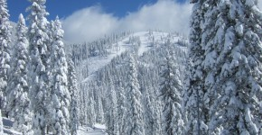 Fresh powder at the Mt. Shasta Ski Park